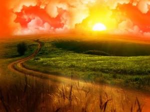 sunset-394085_640